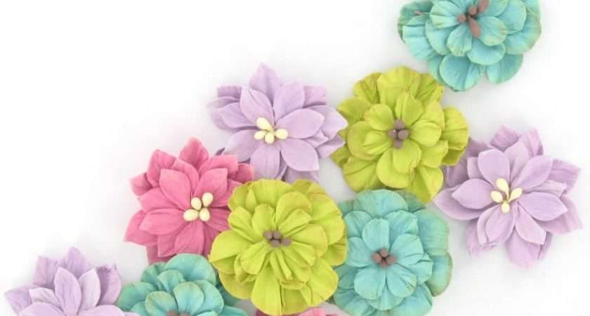 Assorted Paper Flowers Pack Hobbycraft