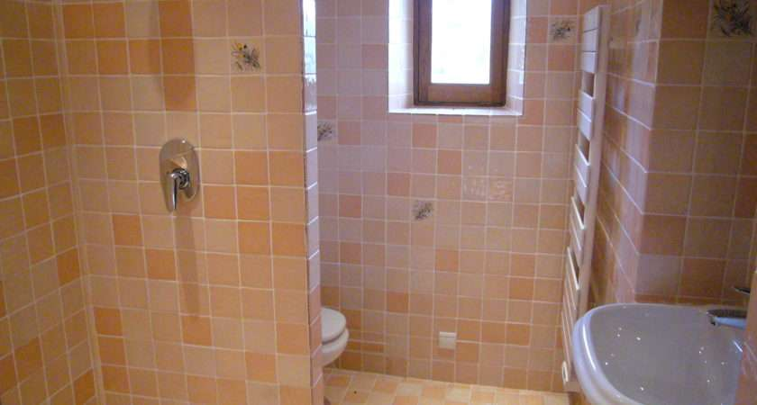 Bath Washbasin Toilet There Also Another Shower Wet Room