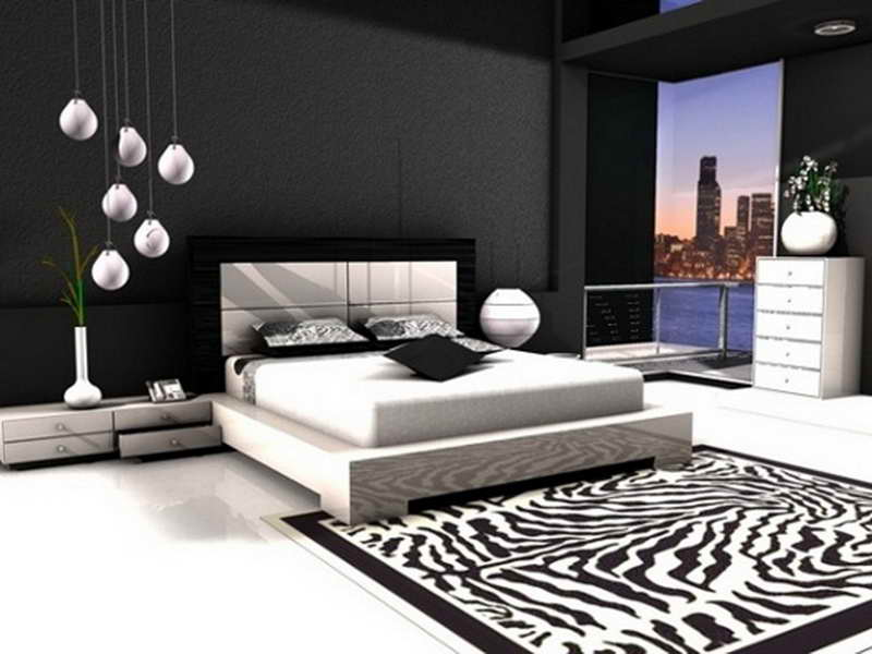 Bedroom Black White Ideas Zebra Carpet