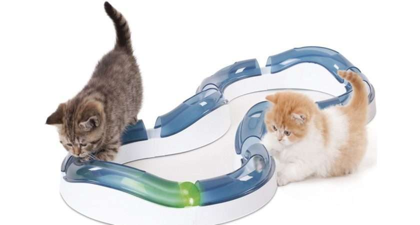 Best Cat Toys Gifts