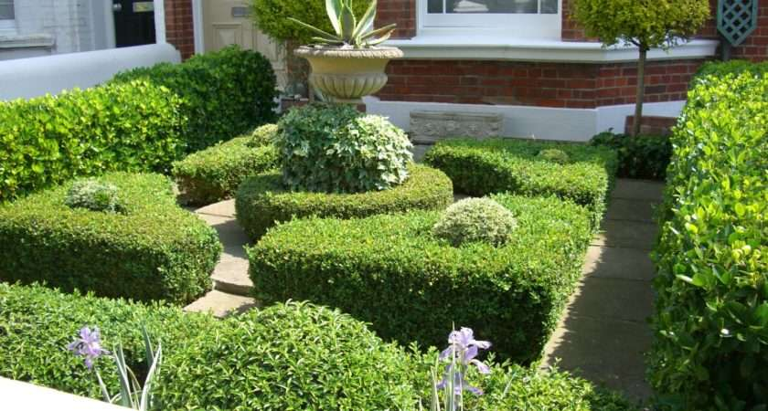 Boxwood Hedges Surrounding Simple Container Ivy Succulent