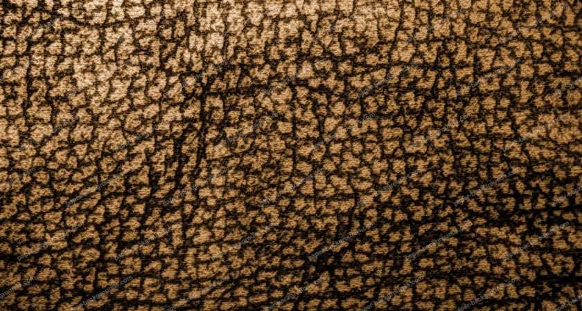 Brown Leopard Pattern Carpet