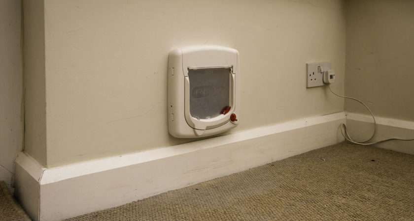 Cat Flap Fitter Small Company Fits Flaps