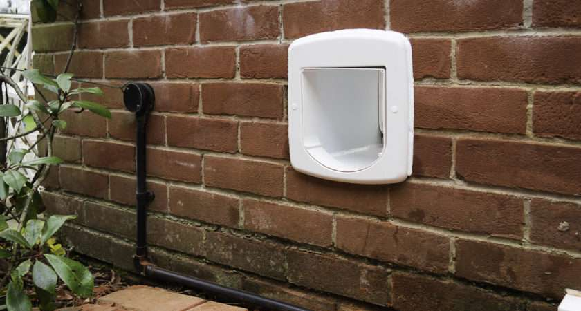 Cat Flap Fitting Services Offer Location Work Carried