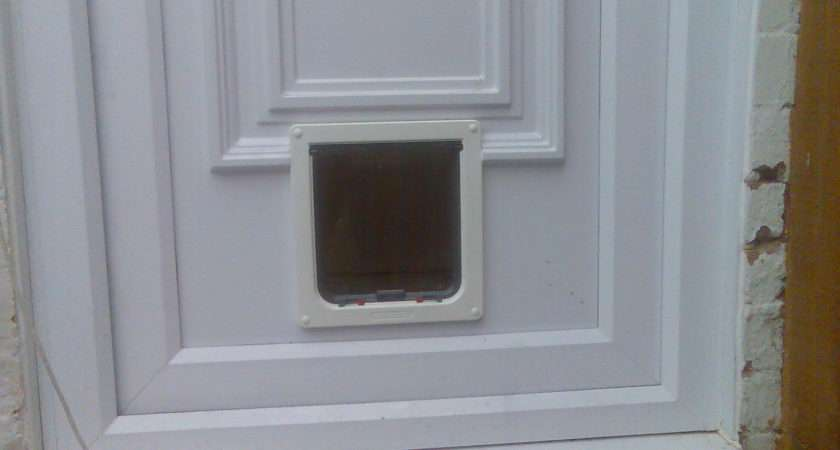 Catmate Large Cat Small Dog Flap Into Moulded Upvc Door