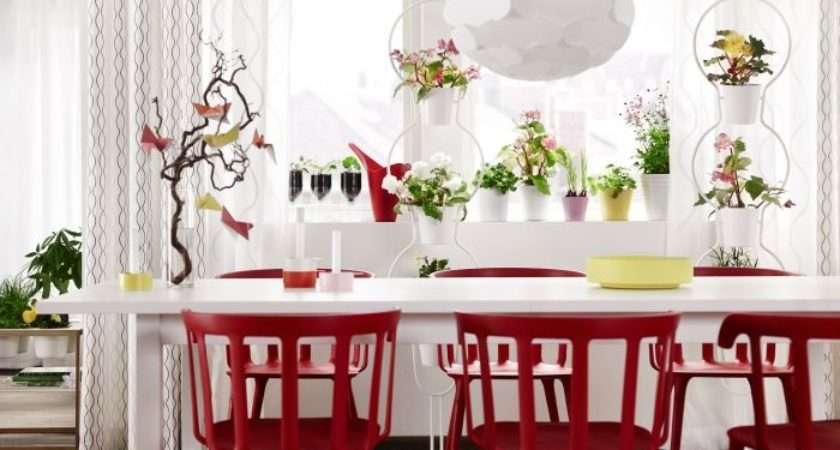 Chairs Dining Rooms Bright Red