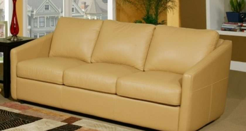 Choose Best Leather Sofa Color Your Living Room