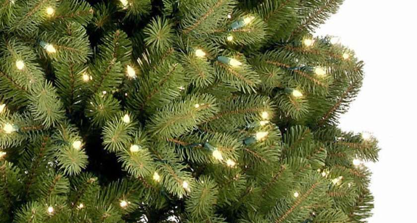 Christmas Trees Pre Lit Bayberry Spruce Feel Real Artificial