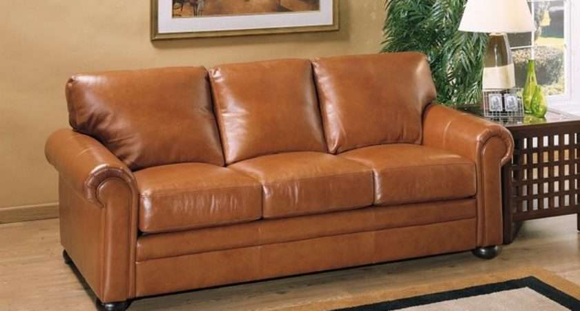 Color Leather Sofa Choose Best