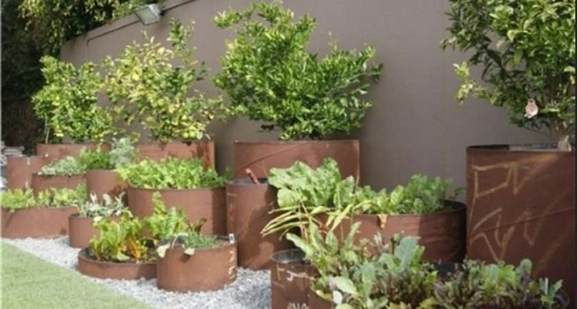 Container Vegetable Gardening Ideas Small
