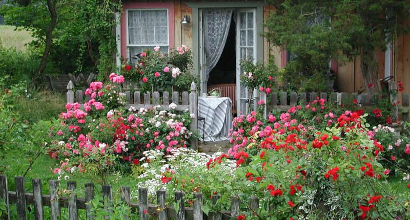 Cottage Garden Flower Carpet Roses Flickr Sharing