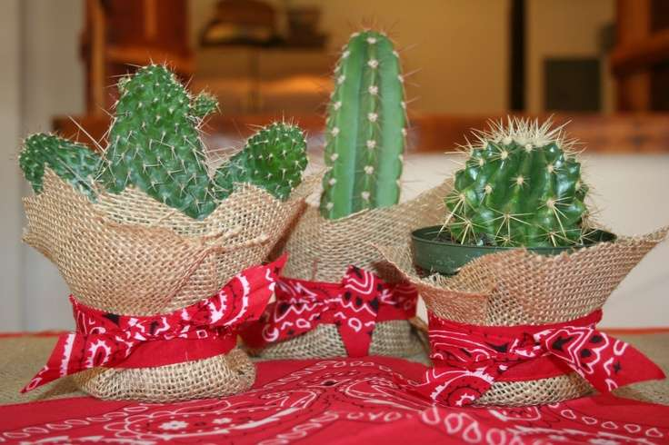 Cowgirl Cowboy Party Cacti Centerpiece More Cactus Western