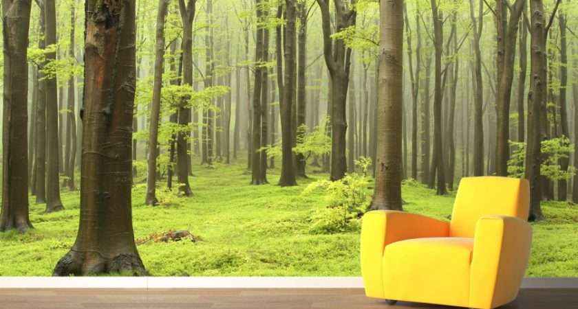 Decals Wall Murals Trees Edition