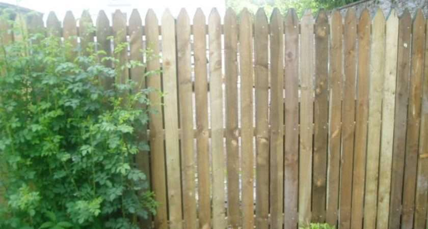 Different Wooden Fence Styles Fences