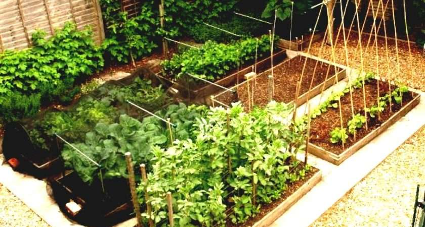 Diy Small Raised Vegetable Garden Along Black Wood