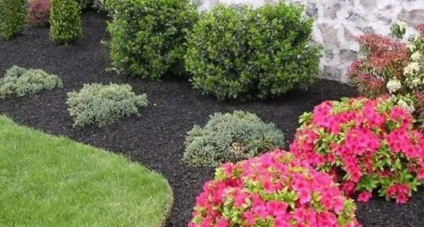 Front Yard Landscaping Ideas Your Home