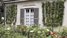Garden Alongside French Country Stucco Home