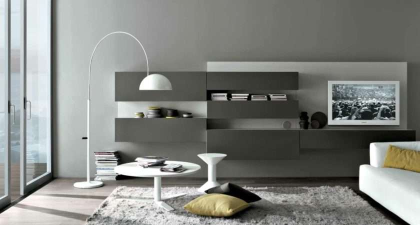 Grey White Cool Contemporary Living Spaces Built Ins
