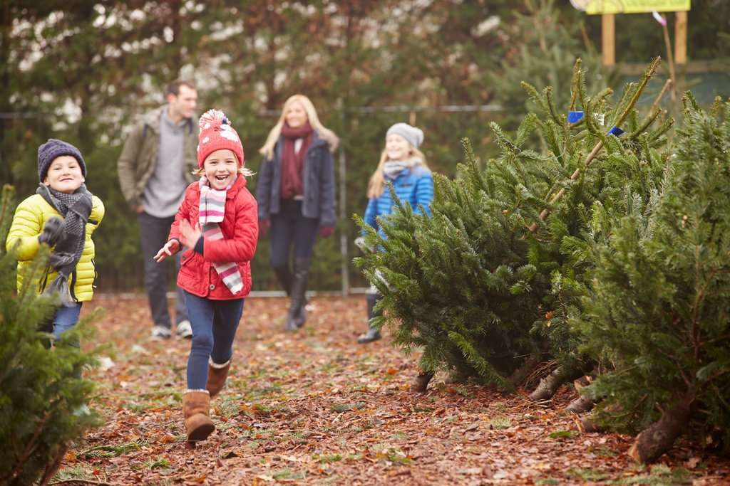Holiday Traditions Start Popsugar Moms