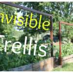 Invisible Trellis Inexpensive Raised Bed