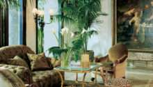 Jungle Themed Living Room Adorning House Natural Nuance