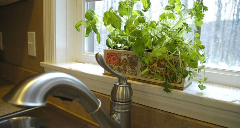 Kitchen Herb Garden Ideas Archives Living Rich Lessliving