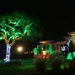 Led Christmas Lights Outdoor Indoor