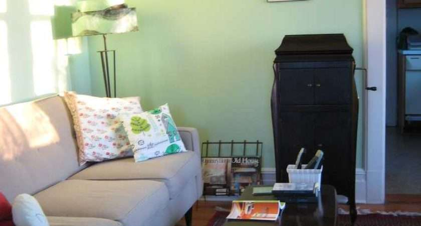 Light Green Living Rooms Decorated House Decor