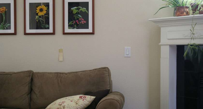 Living Room Paint Examples