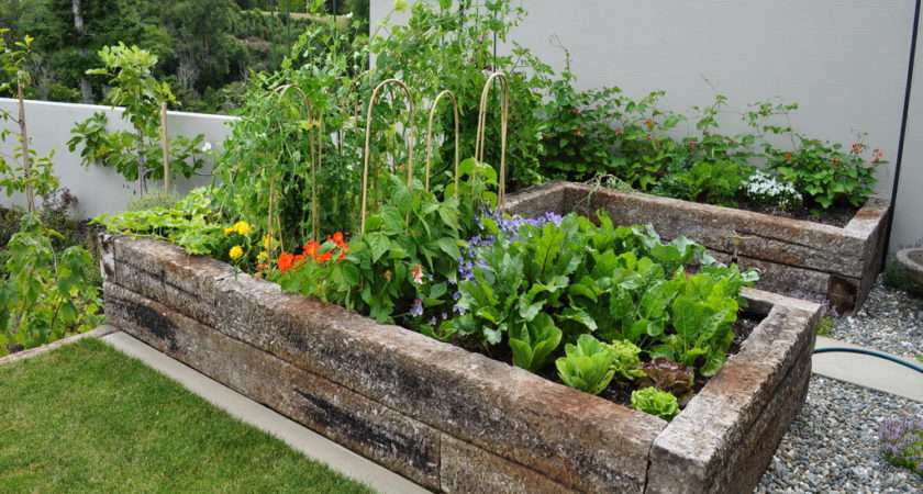 Makes Plants Easy Grow Raised Gardens Have Neat Look