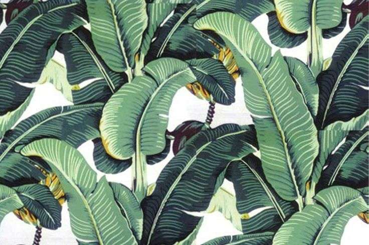 Palm Pattern Color Pinterest Banana Leaves Palms