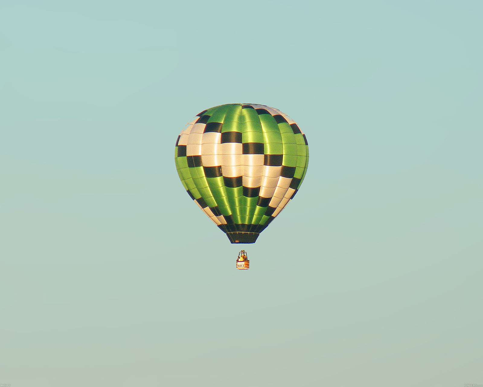 Papers Fly Green Home Balloon