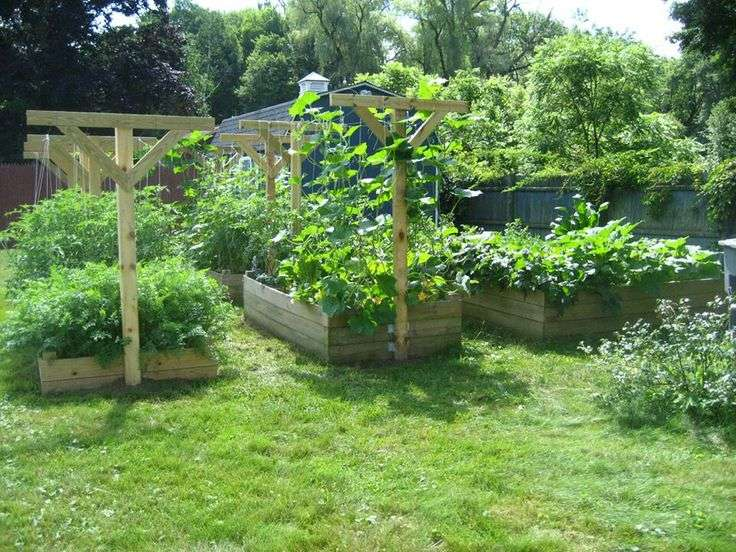 Pinterest Garden Trellis Ideas Photograph
