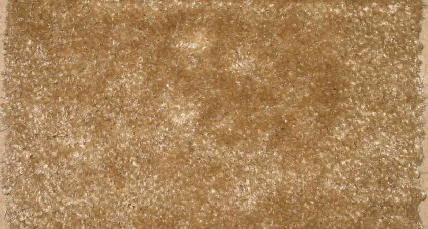 Plush Carpet Has Luxurious Look Features Velvety Even