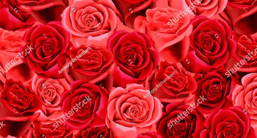 Red Pink Roses Pattern Illustration