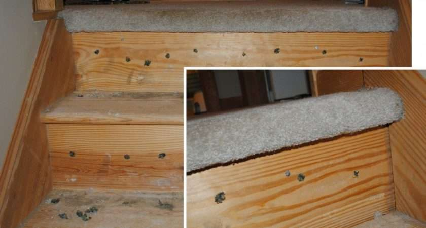 Replace Carpeted Stairs Hardwood