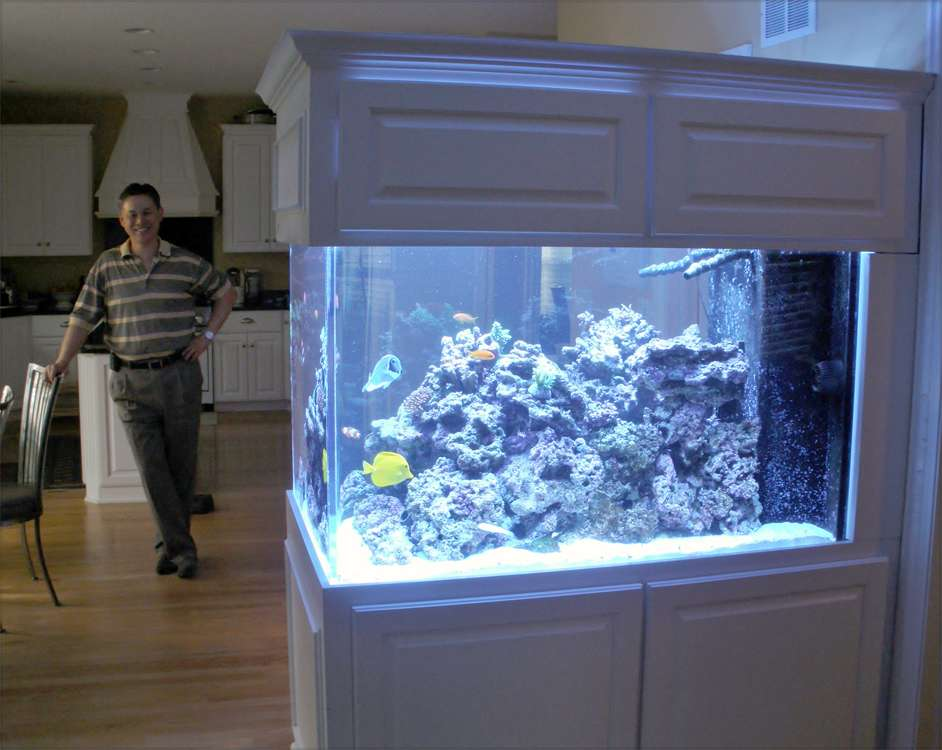 Room Divider Aquarium Owner Blue Planet
