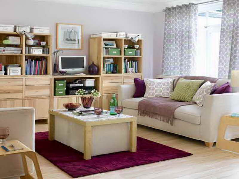 Room Very Small Living Design Ideas