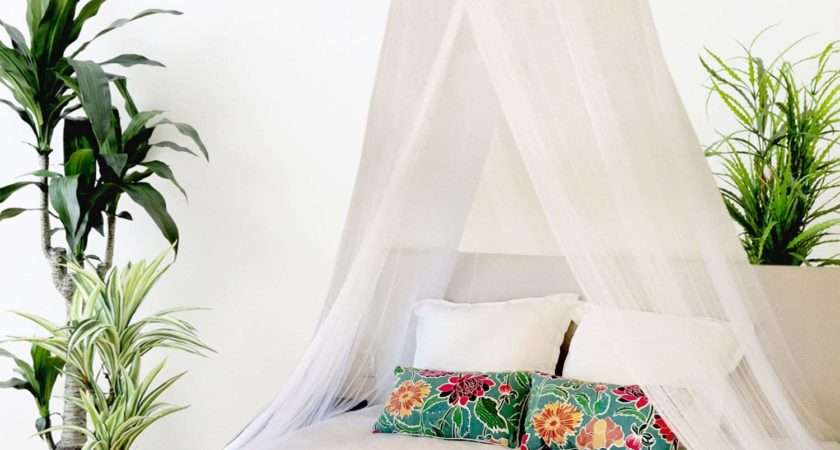 Silk Bed Canopy Home Design