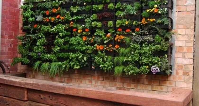 Small Patio Vegetable Garden Ideas Round Beds Decorating