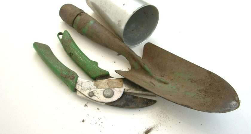 These Tools Should Always Kept Handy Choose Sturdy
