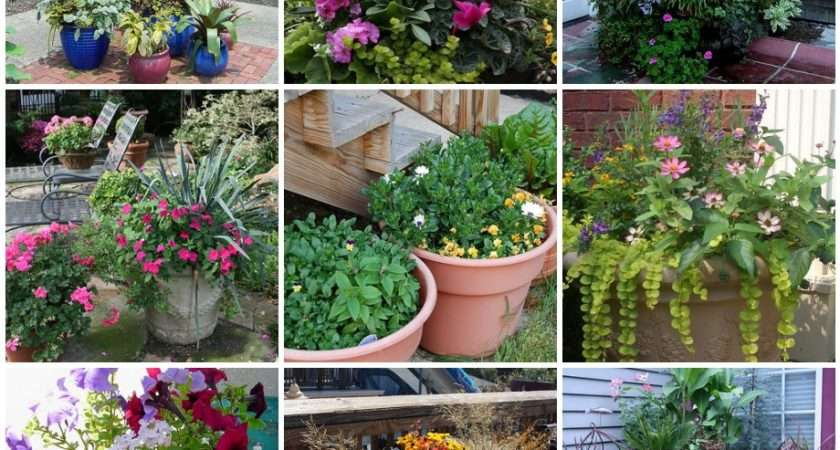 Things Can Grow Home Containers Without