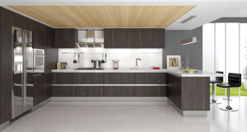 Tips Modern Kitchen Cabinets Tcg