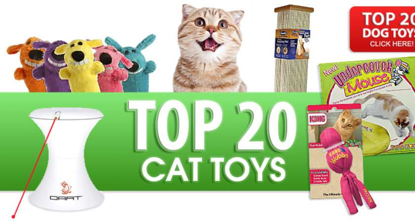 Top Cat Toys Our