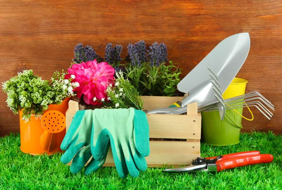 Top Must Have Garden Tools Avid Gardener Details