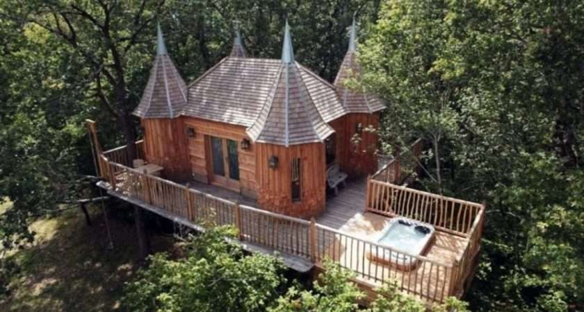 Tree Houses Can Live Huffington Post