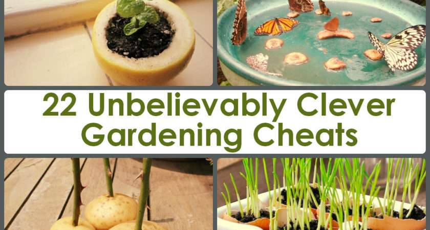 Unbelievably Clever Gardening Cheats