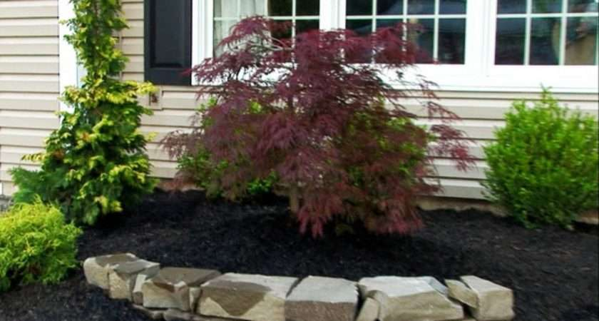 Very Small Front Yard Landscaping Ideas