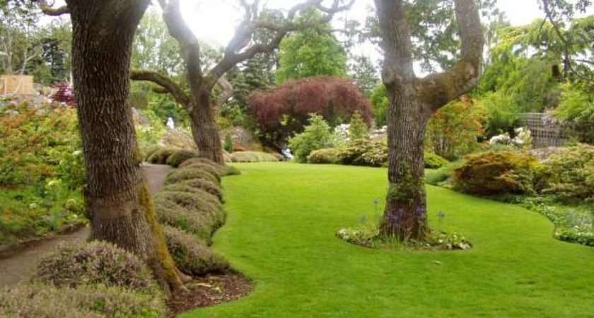 Wakefield Lawncare Gardening Services