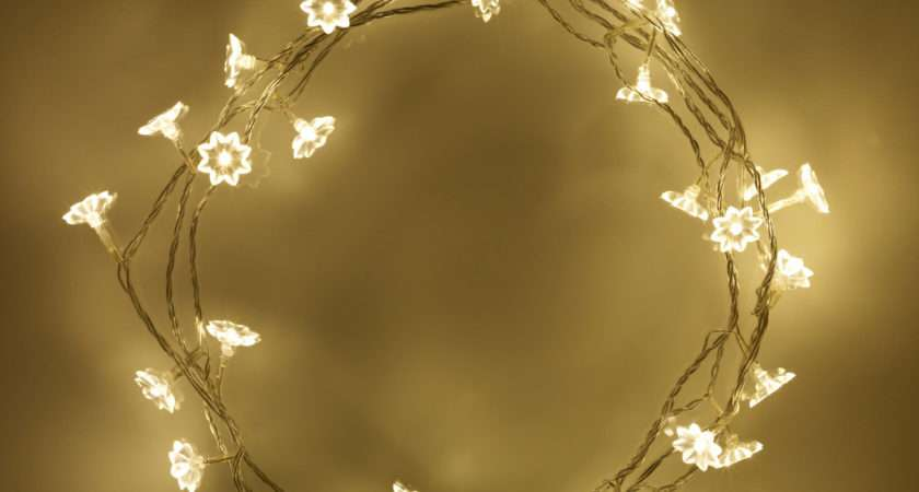 Warm White Led Sunflower Indoor Fairy Lights